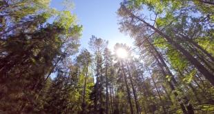 Un voyage en Suède, chez les Vikings: la vidéo